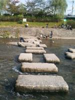 kyoto2011_2.jpg