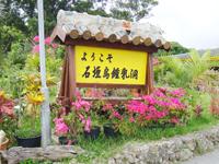 okinawa20110502_13.jpg